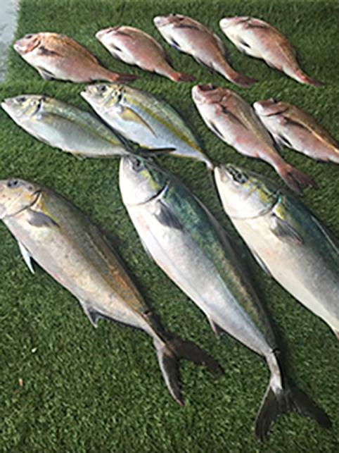 釣り大会-20151127_d